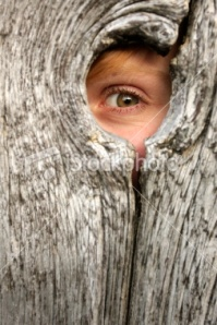 stock-photo-11011693-child-peeking-through-knothole